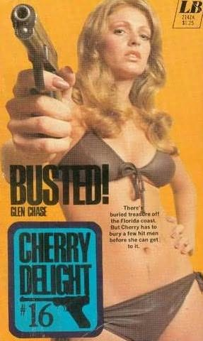 book cover of Busted