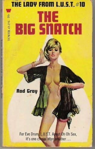 book cover of The Big Snatch