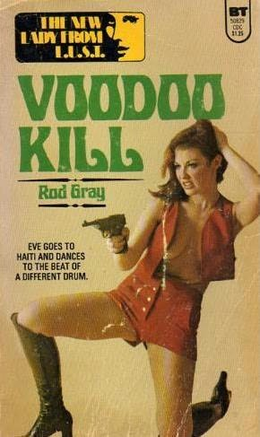 book cover of Voodoo Kill