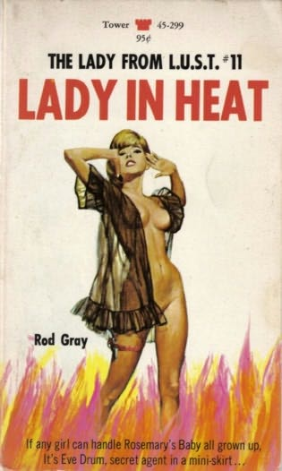 book cover of Lady in Heat