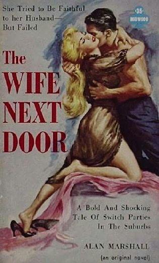book cover of The Wife Next Door